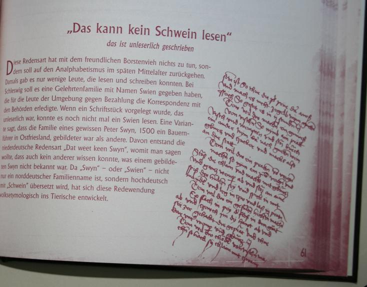 Schwein Gehabt Redewendungen Des Mittelalters Jos Truth